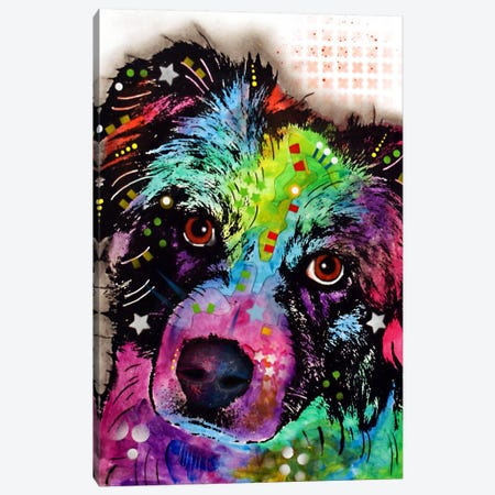 Aussie Canvas Print #DRO54} by Dean Russo Canvas Wall Art