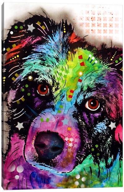 Aussie Canvas Print #DRO54