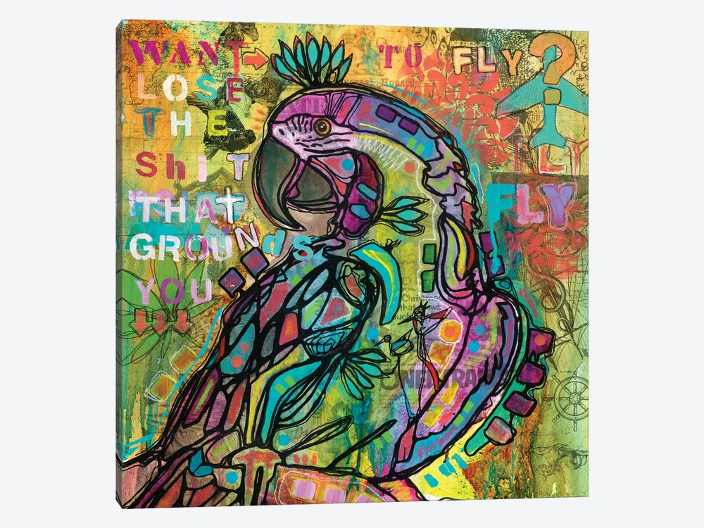 Want To Fly? by Dean Russo 1-piece Canvas Artwork