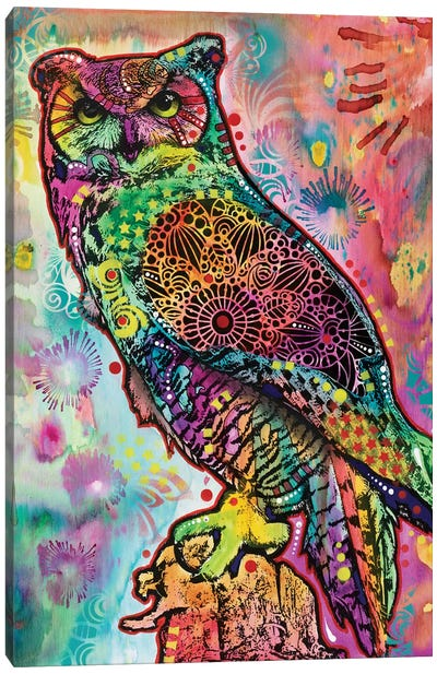 Wise Owl Canvas Art Print