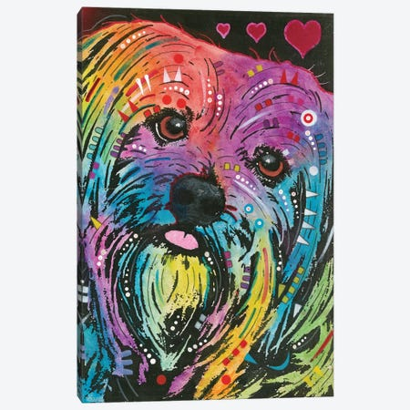 Yorkie Canvas Print #DRO559} by Dean Russo Canvas Art Print