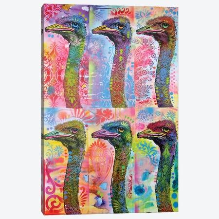 6 Ostriches Canvas Print #DRO564} by Dean Russo Art Print