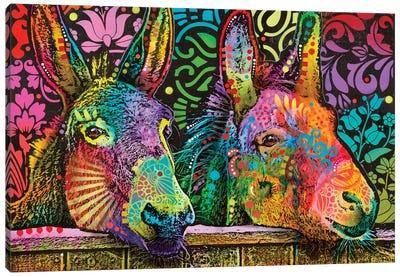 Donkeys Canvas Art Print