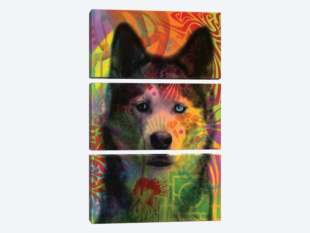 Husky's Eye by Dean Russo 3-piece Canvas Art Print