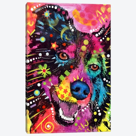 Border Collie Canvas Print #DRO59} by Dean Russo Canvas Print