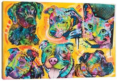5 Dogs And A Cat Canvas Art Print