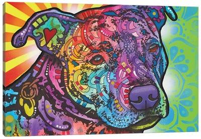 Bella II Canvas Art Print