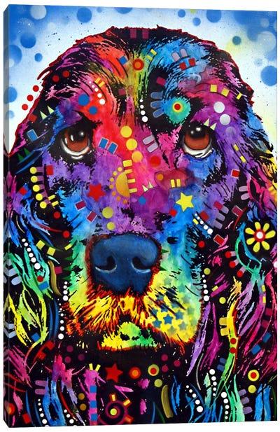 Cocker Spaniel II Canvas Art Print