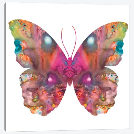Abstract I Butterfly Canvas Print #DRO653} by Dean Russo Canvas Wall Art