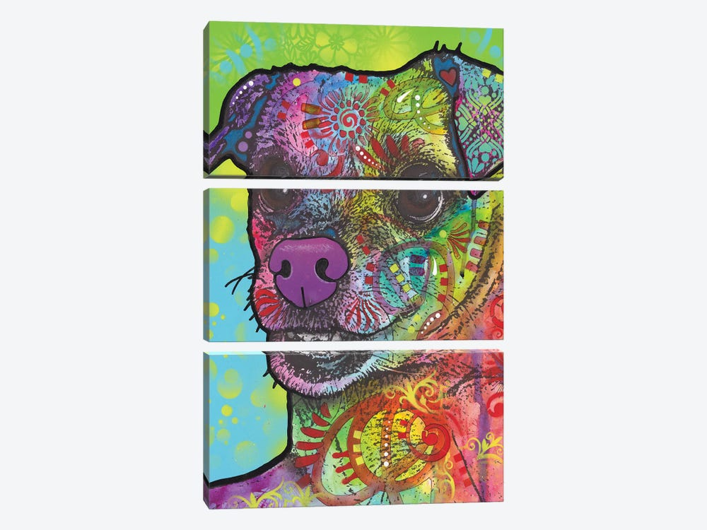 Flora by Dean Russo 3-piece Canvas Artwork