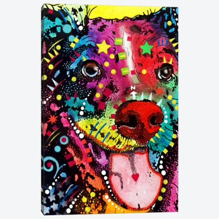 Dak #1 Canvas Print #DRO65} by Dean Russo Art Print