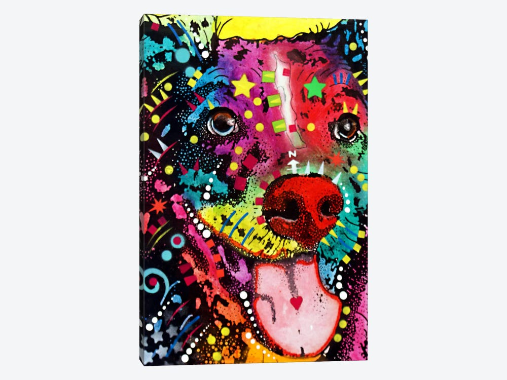 Dak #1 by Dean Russo 1-piece Canvas Wall Art