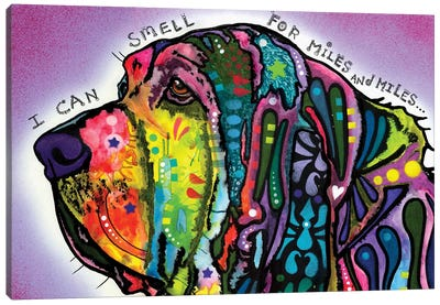 I Can Smell (Bloodhound) Canvas Art Print
