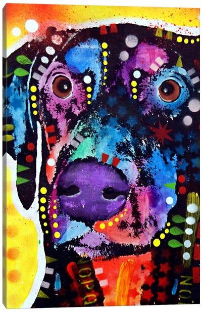 Dobie Canvas Print #DRO66
