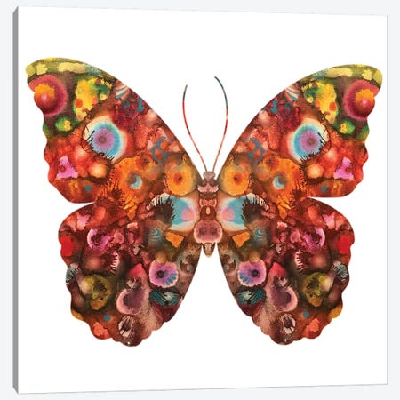 Kamasi Butterfly Canvas Print #DRO672} by Dean Russo Canvas Artwork