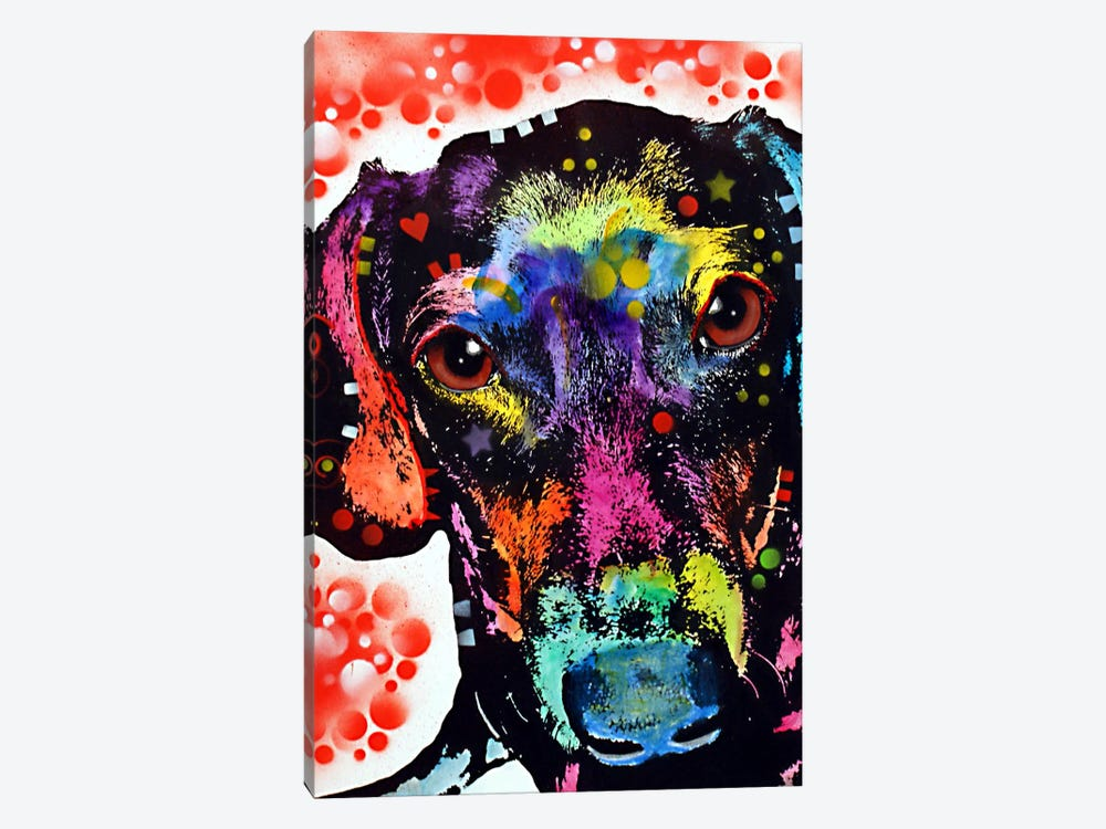 Dox by Dean Russo 1-piece Canvas Wall Art