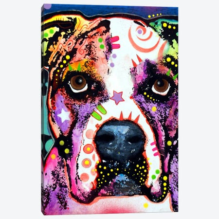 American Bulldog I Canvas Print #DRO6} by Dean Russo Canvas Art