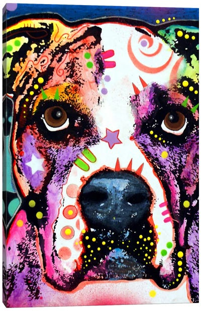 American Bulldog I Canvas Art Print