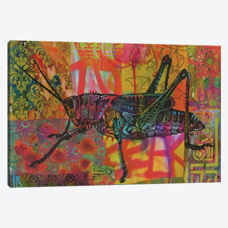 Grasshopper Canvas Print #DRO705} by Dean Russo Art Print