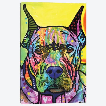 Stare Down Canvas Print #DRO723} by Dean Russo Canvas Artwork
