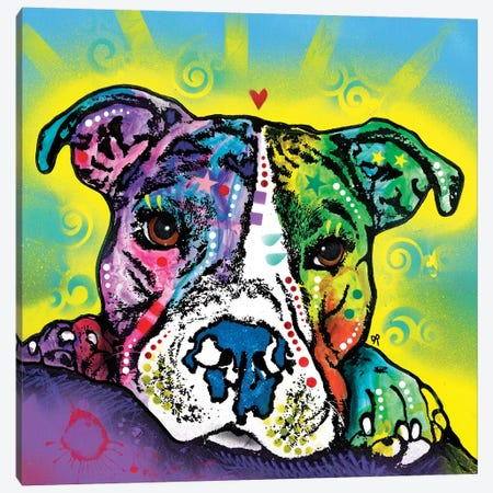 The Baby Pit Bull Canvas Print #DRO725} by Dean Russo Art Print
