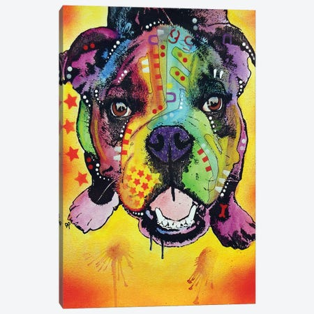 Baby Bulldog Canvas Print #DRO732} by Dean Russo Canvas Print