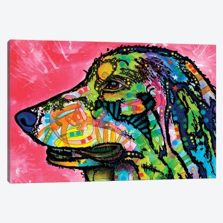 Quinn Canvas Print #DRO833} by Dean Russo Canvas Artwork