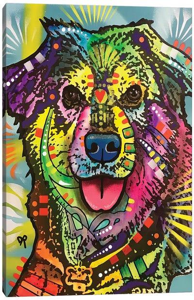 Shep Canvas Art Print