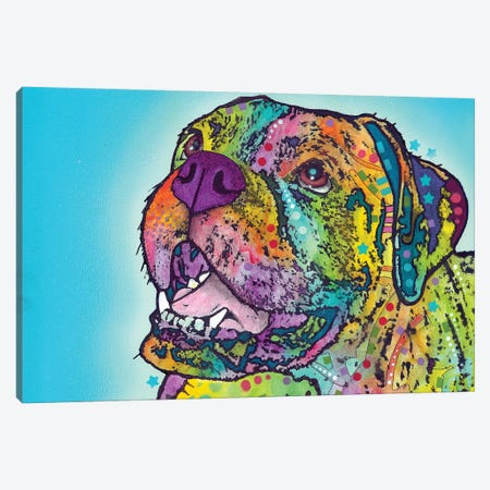 Smiling Boxer Canvas Print #DRO843} by Dean Russo Art Print