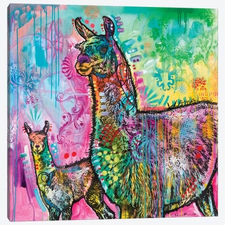 Llama Canvas Print #DRO872} by Dean Russo Canvas Wall Art