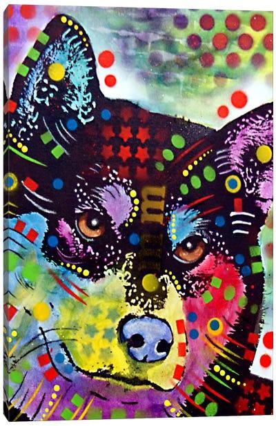 Shiba Inu Canvas Print #DRO87
