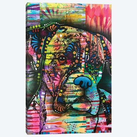 A Serious Boxer Canvas Print #DRO897} by Dean Russo Canvas Art Print