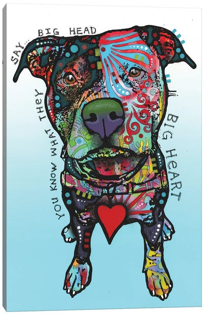 Big Heart Canvas Art Print