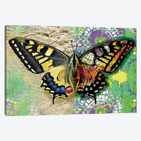 Exposed Butterfly Canvas Print #DRO921} by Dean Russo Canvas Wall Art