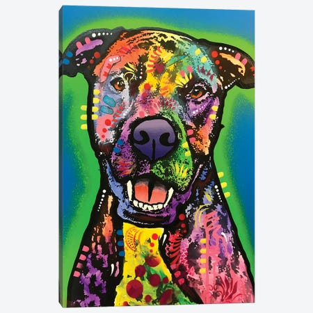 Happy Face Canvas Print #DRO933} by Dean Russo Canvas Print