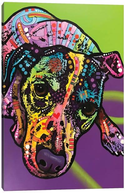 Indelible Jack Canvas Art Print