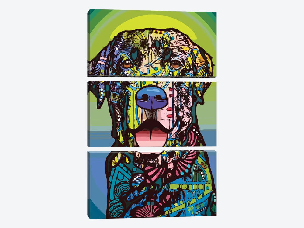 Indelible Lab by Dean Russo 3-piece Canvas Print