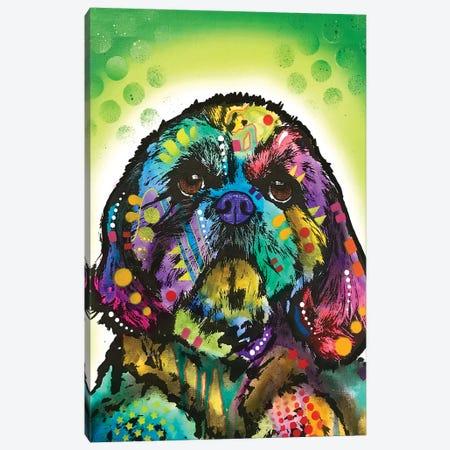 Kinda Shih Tzu Canvas Print #DRO952} by Dean Russo Canvas Art Print