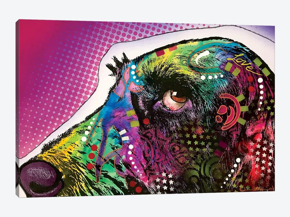 Sneek Peek I by Dean Russo 1-piece Canvas Wall Art