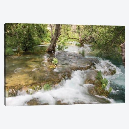 Croatia. Krka National Park cascades. UNESCO World Heritage Site. Canvas Print #DRU11} by Trish Drury Canvas Print
