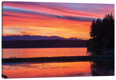 Vibrant Sunset, Kitsap Peninsula, Washington, USA Canvas Art Print