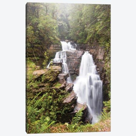 Australia, Tasmania. Cradle Mountain-Lake St. Clair NP, Overland Track. D'alton Falls on side trail Canvas Print #DRU6} by Trish Drury Canvas Art Print