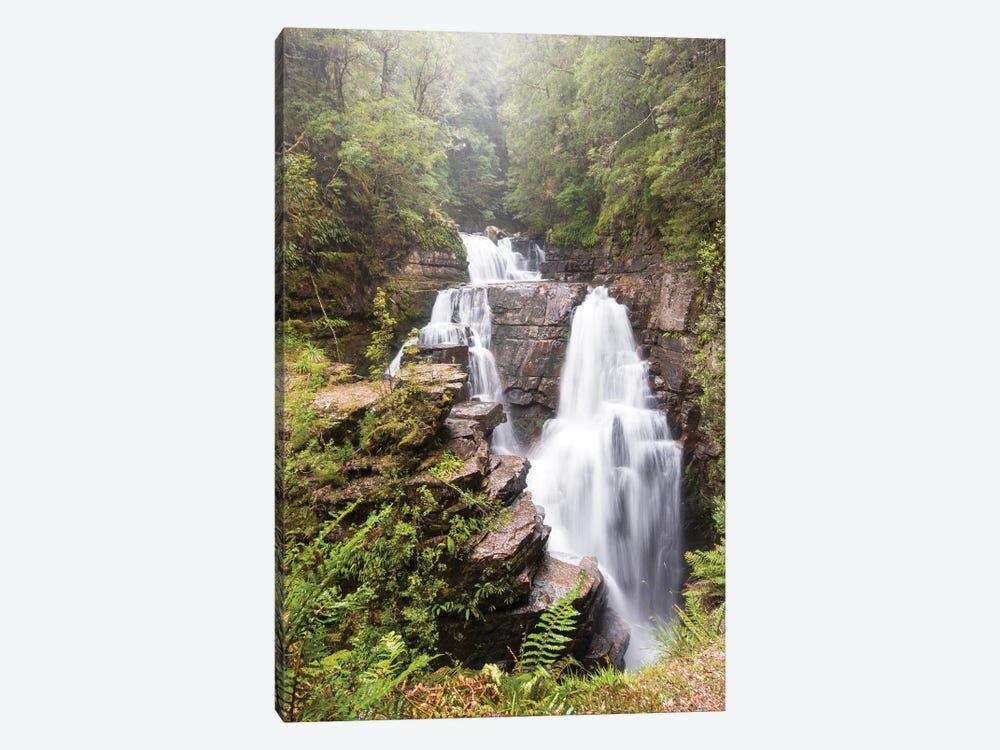 Australia, Tasmania. Cradle Mountain-Lake St. Clair NP, Overland Track. D'alton Falls on side trail by Trish Drury 1-piece Canvas Wall Art
