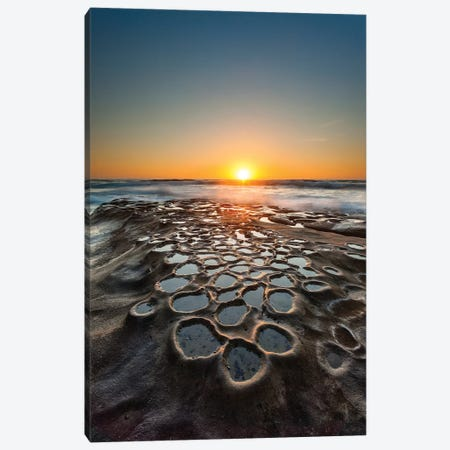 Tide Pools, La Jolla, San Diego, California, USA Canvas Print #DRW1} by Andrew Shoemaker Canvas Artwork