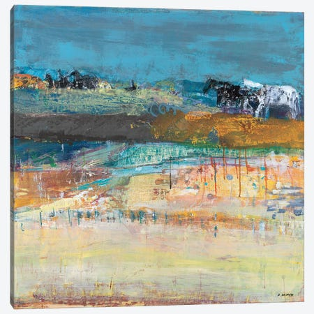 Hot Springs Canvas Print #DSA2} by Dominique Samyn Canvas Wall Art