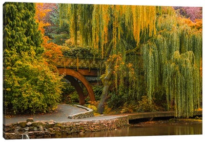 Willows Over The Pond Canvas Art Print