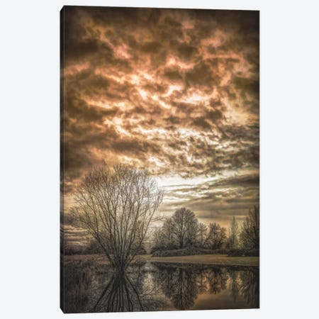 Winter Chill Canvas Print #DSC102} by Don Schwartz Canvas Wall Art