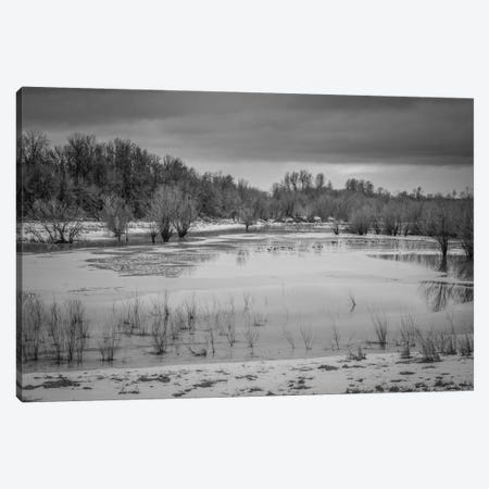 Winter Wetland II Canvas Print #DSC105} by Don Schwartz Canvas Art Print