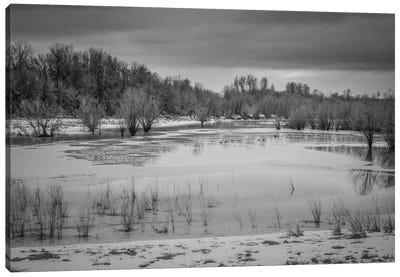 Winter Wetland II Canvas Print #DSC105