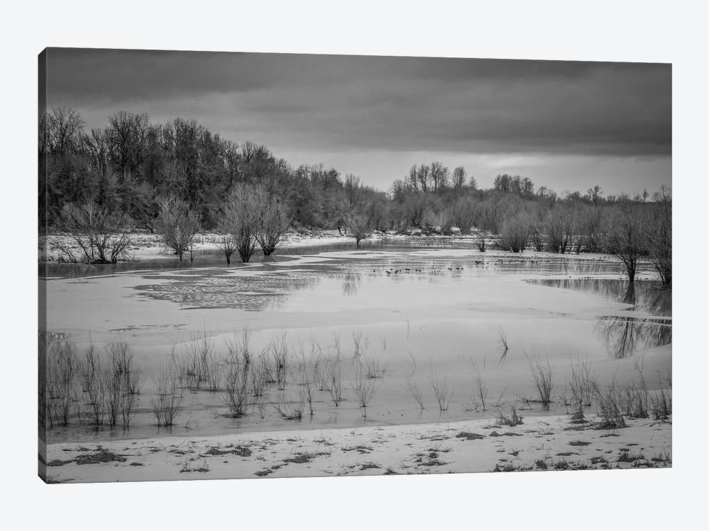 Winter Wetland II by Don Schwartz 1-piece Canvas Art Print